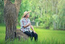Tecnologia e gestão são futuro do agronegócio