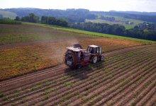 Internet das Coisas: impactos que revolucionam o agronegócio