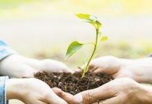 Futuro do agronegócio: fatores tecnológicos de sucesso