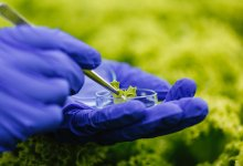 O futuro da tecnologia no agronegócio
